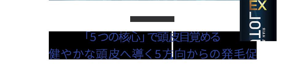 CONCEPT 「5つの核心」で頭皮目覚める健やかな頭皮へ導く5方向からの発毛促進