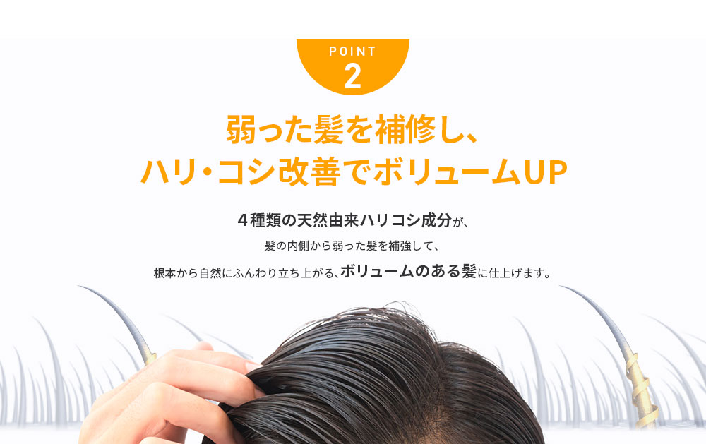 POINT2 弱った髪を補修し、ハリ・コシ改善でボリュームUP